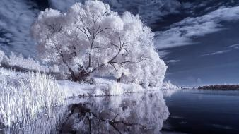 Water winter trees infrared photography wallpaper