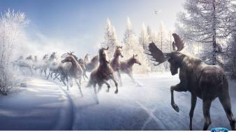 Ford horses commercial moose wallpaper