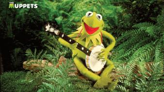 Green frogs kermit the frog banjo jim henson wallpaper
