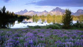 Landscapes spring (season) wyoming range national park Wallpaper