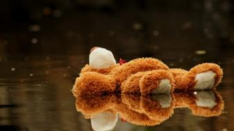 Water toys (children) stuffed animals reflections wallpaper