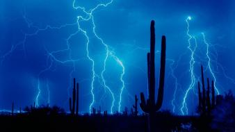 Lightning And Cactus wallpaper