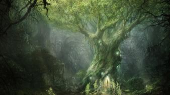 Sun trees forests fantasy art mysterious wallpaper