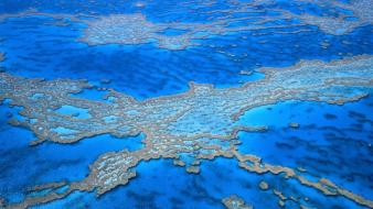 Australia great barrier reef Wallpaper