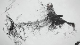 Black and white dark birds digital art ravens wallpaper