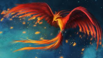 Red birds phoenix artwork drawings wallpaper