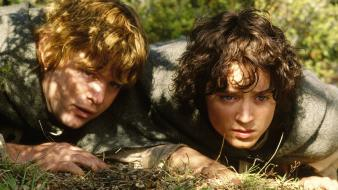 Sean astin two towers frodo baggins hobbits wallpaper