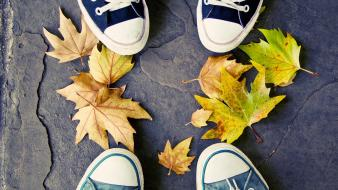 Autumn (season) shoes converse fallen leaves Wallpaper