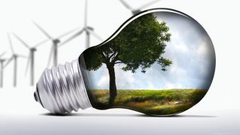 Trees grass light bulbs windmills wallpaper