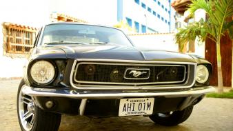 Cars ford mustang black muscle car Wallpaper