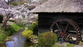 Flowers spring (season) streams barn flowered trees wallpaper