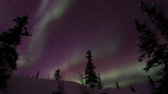 Landscapes nature snow trees aurora borealis national geographic Wallpaper