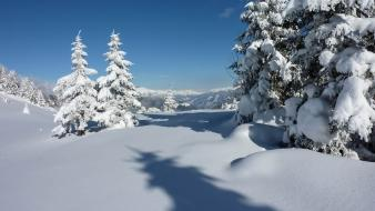 Landscapes winter snow trees snowy mountains wallpaper