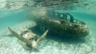 Nature aircraft wrecks underwater waterscapes wallpaper