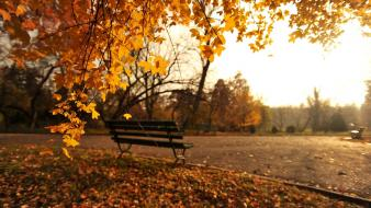 Nature romania chairs autumn wallpaper