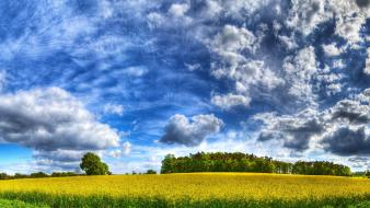 Clouds trees plains breeze skies Wallpaper