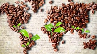 Food coffee beans world map wallpaper
