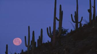 Landscapes arizona national monument full moon wallpaper