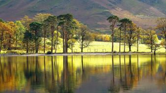 Mountains landscapes trees england lakes reflections wallpaper