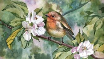 Paintings nature flowers birds leaves artwork watercolor robins Wallpaper