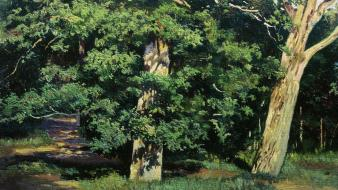Paintings nature trees forest artwork ivan shishkin russians wallpaper