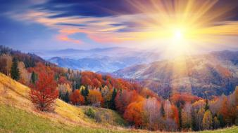 Sunrise mountains forest leaves autumn Wallpaper