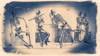 Anatomy skeletons monochrome diagram Wallpaper