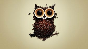 Coffee funny cups owls beans wallpaper