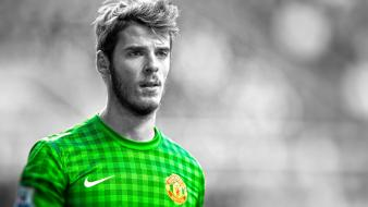 Fc premier league cutout david de gea wallpaper