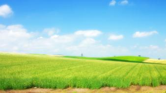 Landscapes nature grass skyscapes photoshop country field wallpaper