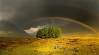 Landscapes trees rainbows wallpaper
