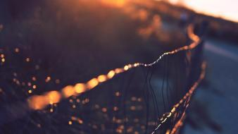 Sun fences wire rays wallpaper