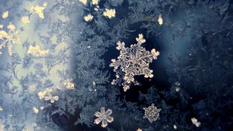 Winter snowflakes wallpaper