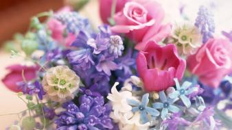 Flowers decoration normal wallpaper