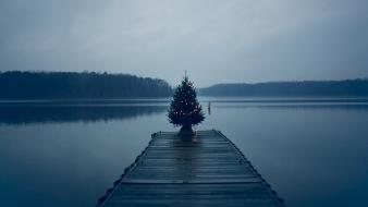 Trees dark dock fog lakes christmas tree Wallpaper