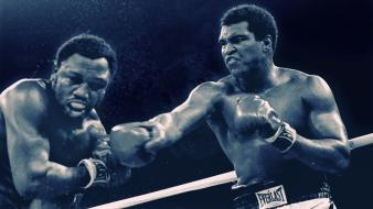 Fight boxing muhammad ali boxers boxer gloves wallpaper
