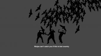 Meme ninjas cant catch you if country bats wallpaper