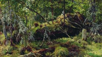 Moss artwork traditional art ivan shishkin russian wallpaper