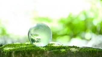 Nature balls crystals moss wallpaper