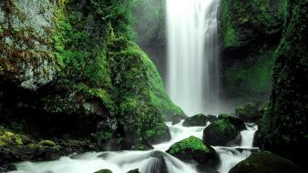 Nature forest national moss waterfalls washington creek wallpaper