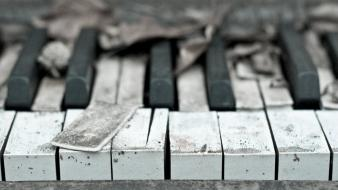 Piano keyboards instruments keys wallpaper