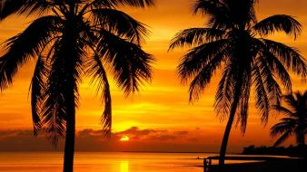 Sunset nature florida key west wallpaper