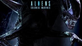Video games aliens colonial marines Wallpaper