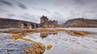 Water cold stones bridges castle arches vegetation wallpaper
