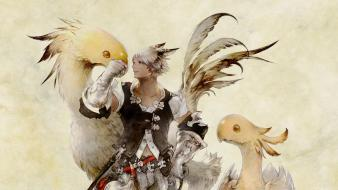 Final fantasy video games xiv chocobo wallpaper