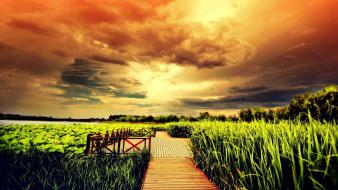 Landscapes nature grass fields plants boardwalk rural pictorial wallpaper