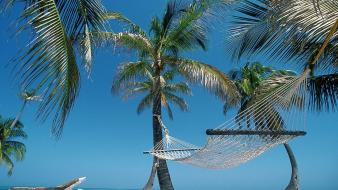Nature beach hammock palm trees belize wallpaper