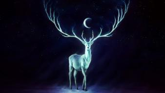 Night stars animals moon glowing artwork reindeer crescent wallpaper