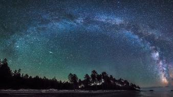 Trees stars milky way wallpaper