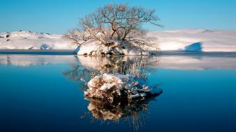 Water nature winter trees islands wallpaper
